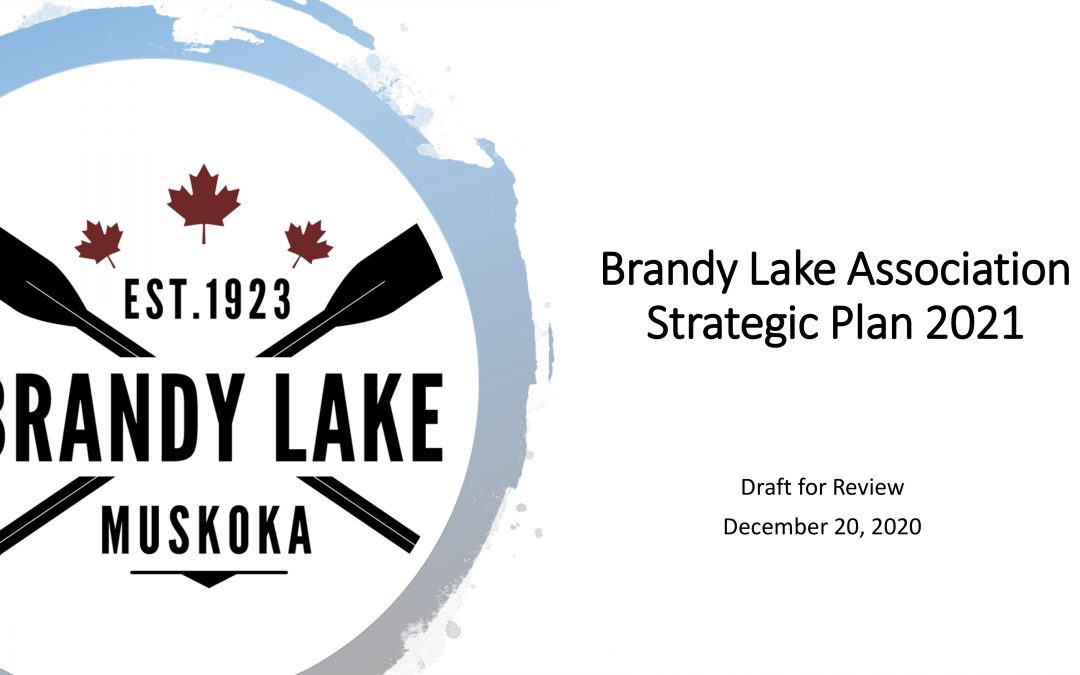 Brandy Lake Association Strategic Plan